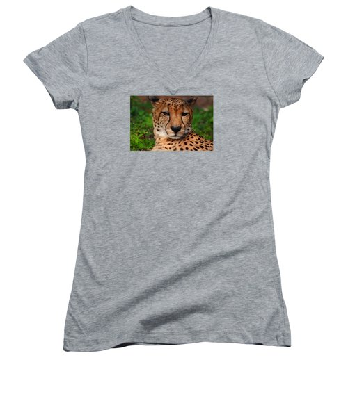 Women's V-Neck T-Shirt (Junior Cut) featuring the photograph Samson by Michiale Schneider