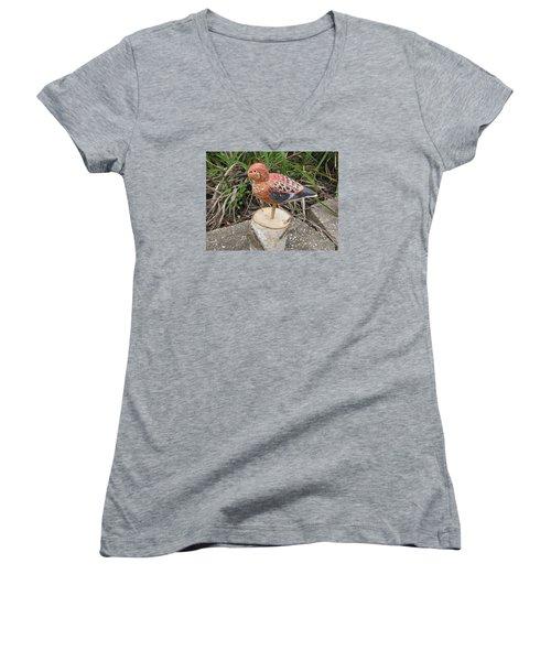Sanderling Foward 3 Women's V-Neck T-Shirt
