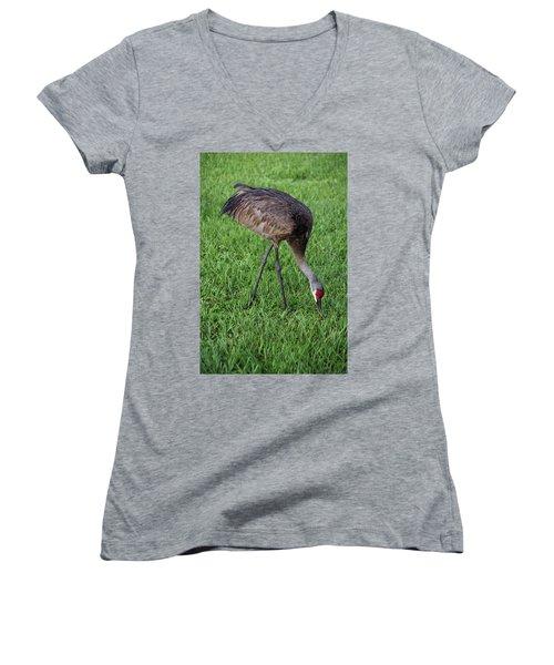 Sandhill Crane II Women's V-Neck T-Shirt (Junior Cut) by Richard Rizzo
