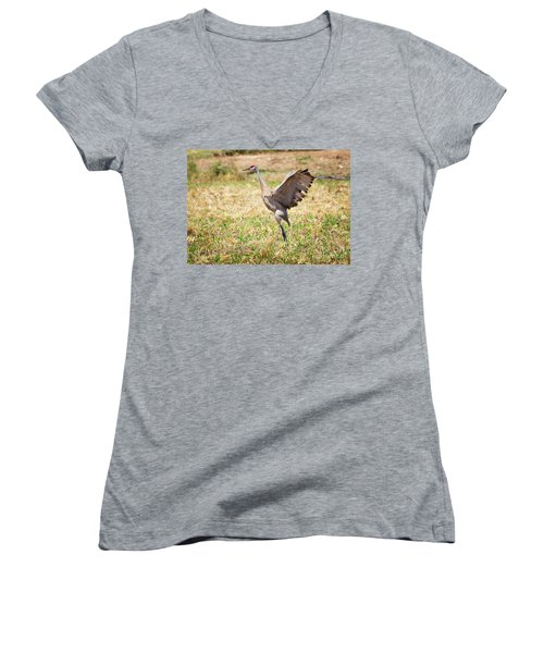Women's V-Neck T-Shirt featuring the photograph Sandhill Crane Morning Stretch by Ricky L Jones