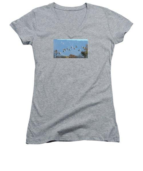 Sandhill Cranes In Flight Women's V-Neck T-Shirt (Junior Cut) by Alan Toepfer