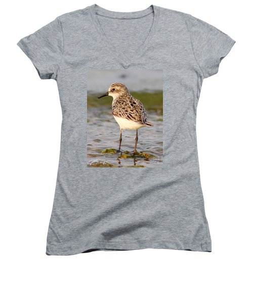 Sandpiper Portrait Women's V-Neck (Athletic Fit)
