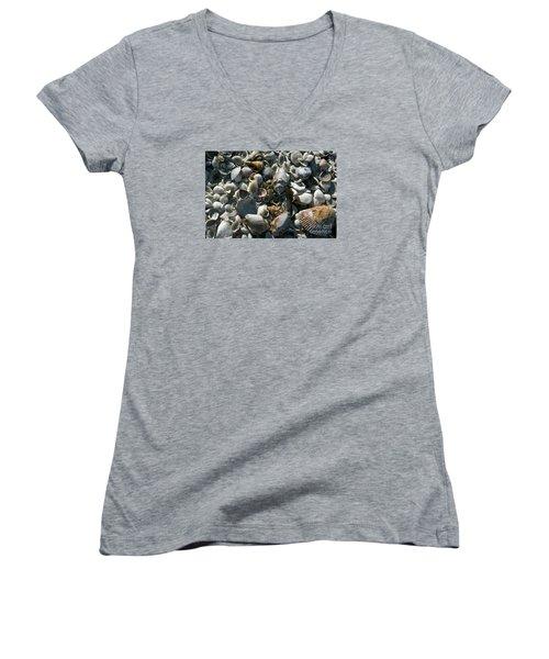 Sanibel Shells Women's V-Neck T-Shirt