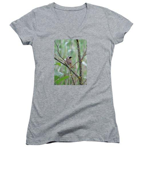 Sassy Women's V-Neck T-Shirt (Junior Cut) by I'ina Van Lawick