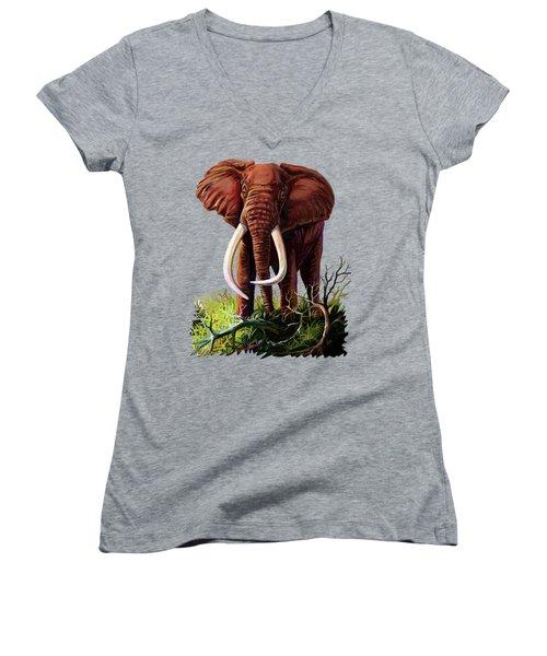 Satao II - The Elephant Women's V-Neck (Athletic Fit)