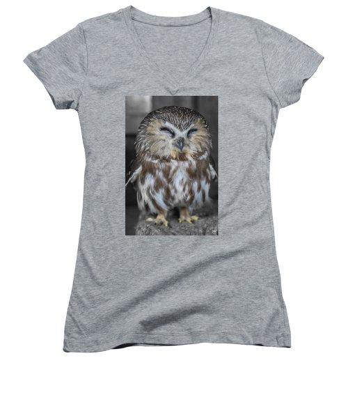 Saw Whet Owl Women's V-Neck