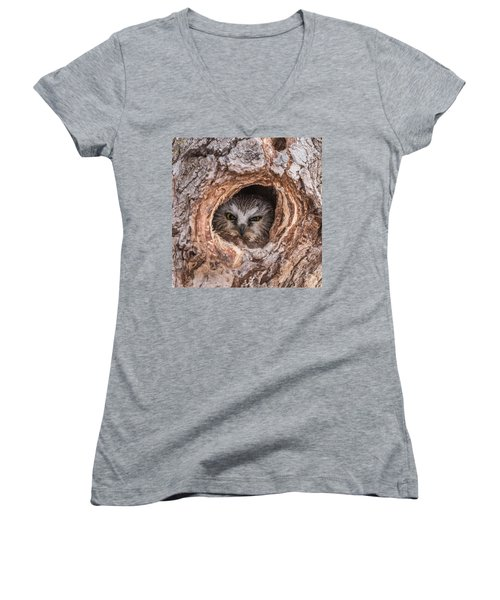 Saw-whet Secret Women's V-Neck T-Shirt (Junior Cut) by Yeates Photography