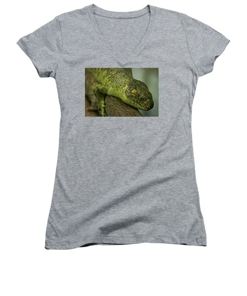 Scales Of The Hunter Women's V-Neck T-Shirt (Junior Cut)