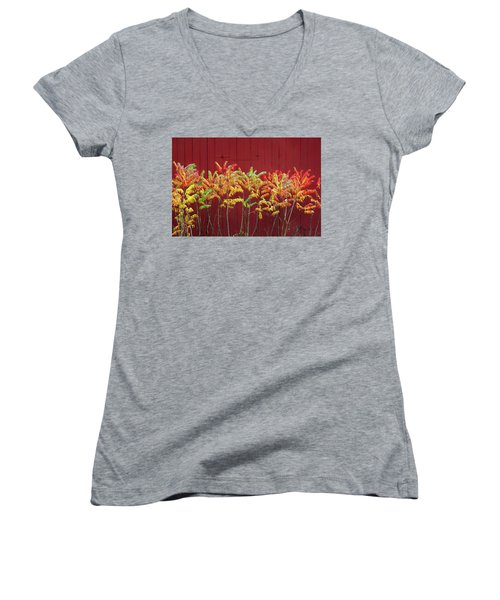 Scandinavia Sumac Women's V-Neck T-Shirt