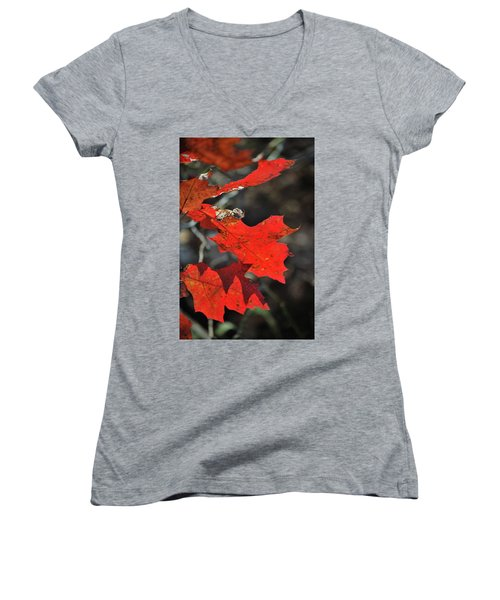 Scarlet Autumn Women's V-Neck