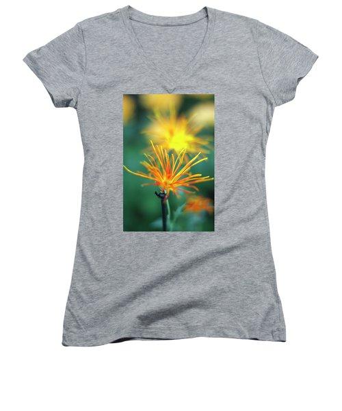 Scraggly Mum Women's V-Neck T-Shirt