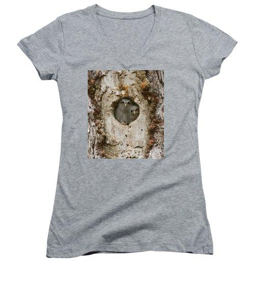 Screech Owl Babies Peeking Out Women's V-Neck T-Shirt