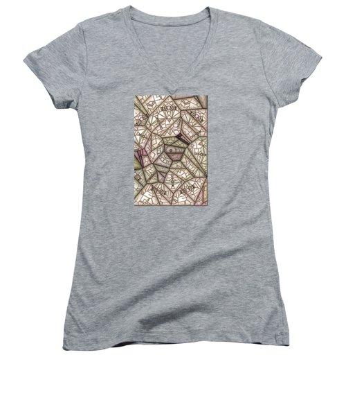 Scribed Women's V-Neck T-Shirt (Junior Cut) by Ron Bissett