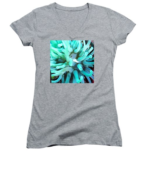 Sea Anemone And Squat Shrimp Women's V-Neck (Athletic Fit)