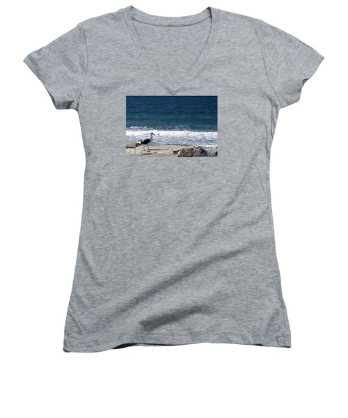 Women's V-Neck T-Shirt (Junior Cut) featuring the photograph Seagull  by Christopher Woods