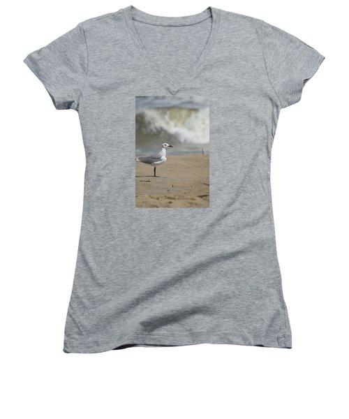 Women's V-Neck T-Shirt (Junior Cut) featuring the photograph Sea Gull by Heidi Poulin