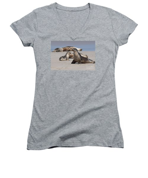 Women's V-Neck T-Shirt (Junior Cut) featuring the photograph Sea Lions by Werner Padarin