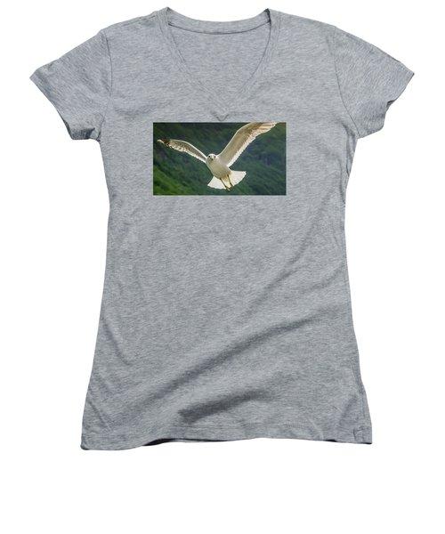Seagull At The Fjord Women's V-Neck T-Shirt (Junior Cut) by KG Thienemann