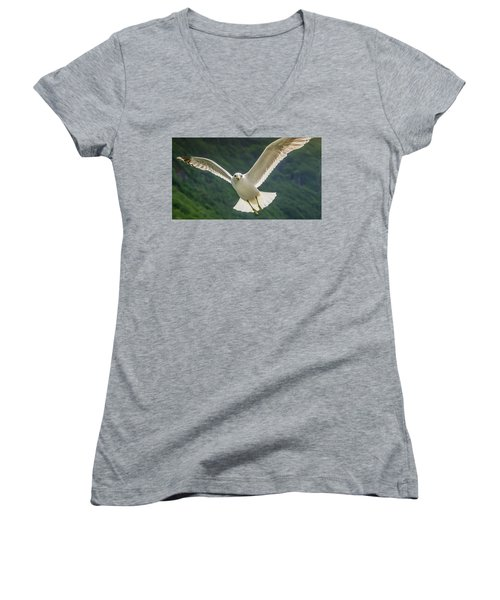 Seagull At The Fjord Women's V-Neck