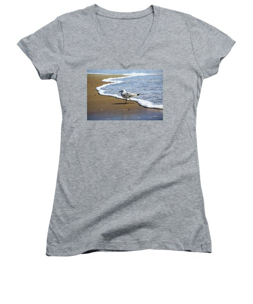 Seagull Women's V-Neck