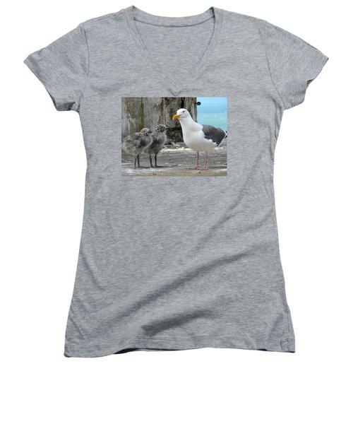 Seagull Family Women's V-Neck T-Shirt