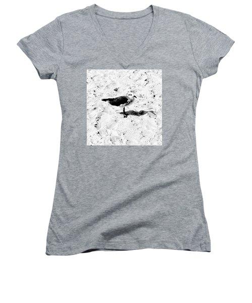 Seagull I Women's V-Neck