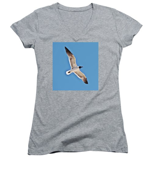 Seagull In Flight Women's V-Neck T-Shirt (Junior Cut) by Gina O'Brien