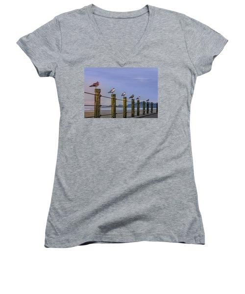 Seagull Lineup Women's V-Neck T-Shirt