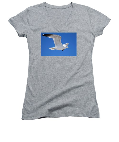 Seagull Women's V-Neck T-Shirt