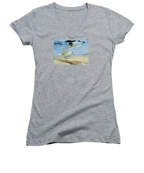 Seagull On The Beach Women's V-Neck (Athletic Fit)
