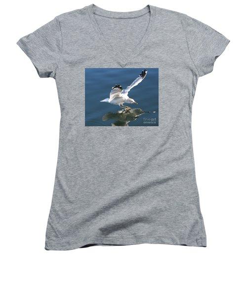 Seagull Reflection Women's V-Neck T-Shirt