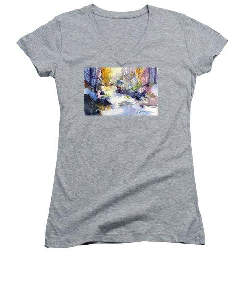 Secret Falls Women's V-Neck T-Shirt (Junior Cut) by P Anthony Visco