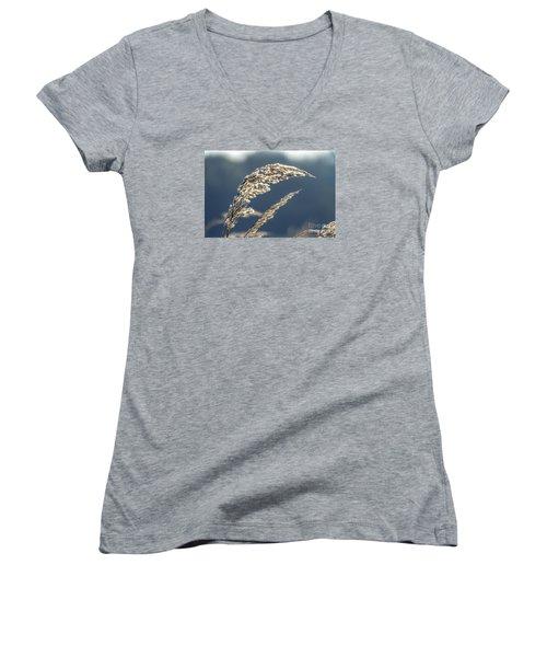 Women's V-Neck T-Shirt (Junior Cut) featuring the photograph Sedge Grass by Odon Czintos