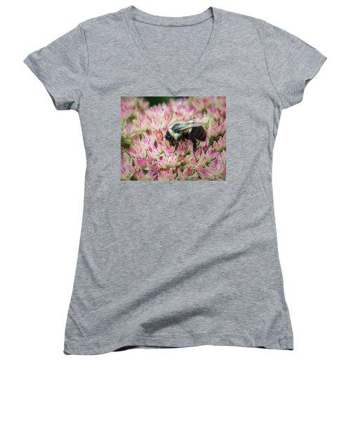 Women's V-Neck T-Shirt (Junior Cut) featuring the photograph Sedum Bumbler by Bill Pevlor