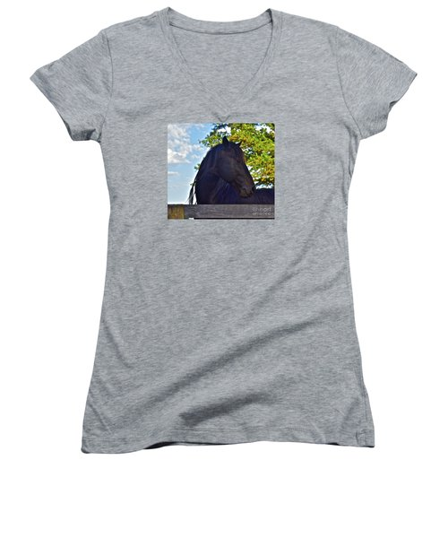 Do You Like My Brade Women's V-Neck T-Shirt