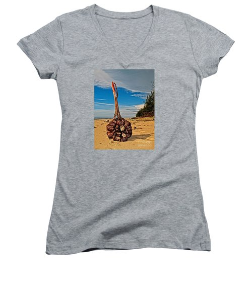 Women's V-Neck T-Shirt (Junior Cut) featuring the photograph Seeds For The World by Gary Bridger