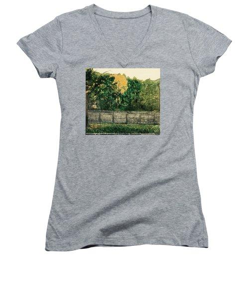Seekonk Farm Women's V-Neck T-Shirt