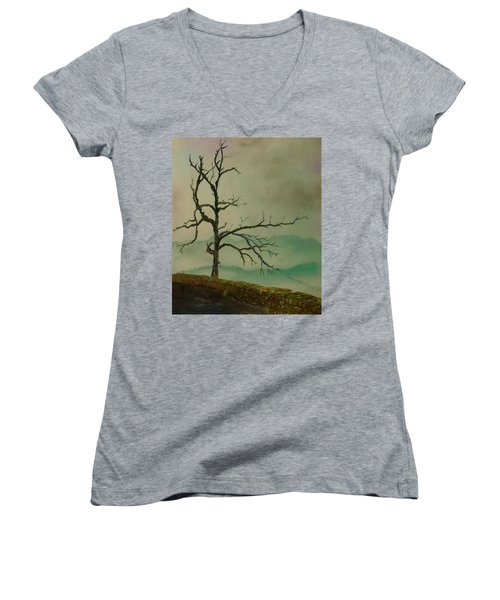 Sentinel Of The Shenandoah  Women's V-Neck