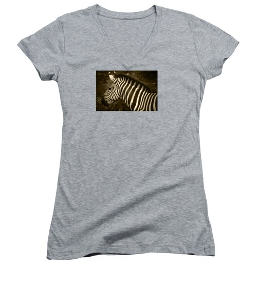 Sepia Zebra Women's V-Neck T-Shirt (Junior Cut) by Greg Slocum