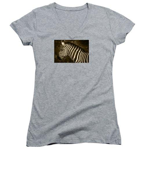Sepia Zebra Women's V-Neck T-Shirt
