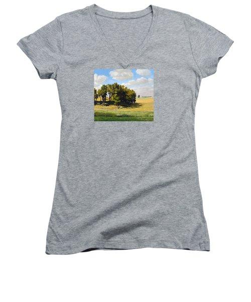 September Summer Women's V-Neck T-Shirt (Junior Cut) by Bruce Morrison
