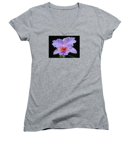 Serendipity Orchid Women's V-Neck (Athletic Fit)