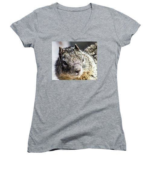 Serious Squirrel Women's V-Neck
