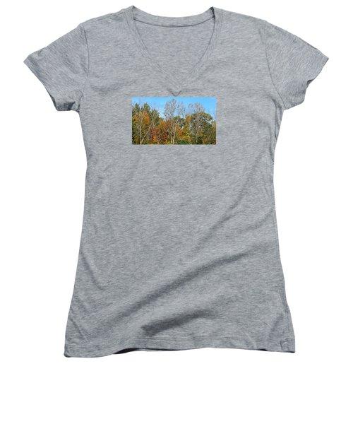 Shades Women's V-Neck T-Shirt (Junior Cut) by Jana E Provenzano