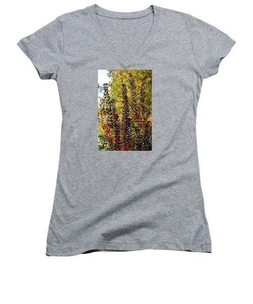 Shades Of Fall Women's V-Neck T-Shirt