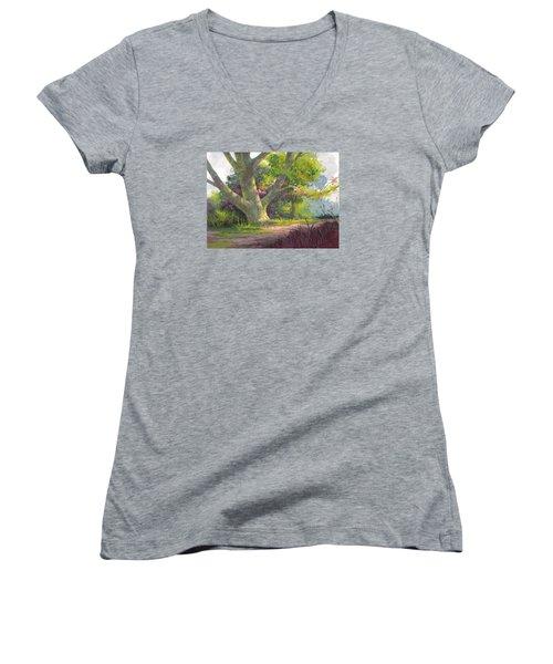 Shady Oasis Women's V-Neck T-Shirt (Junior Cut)