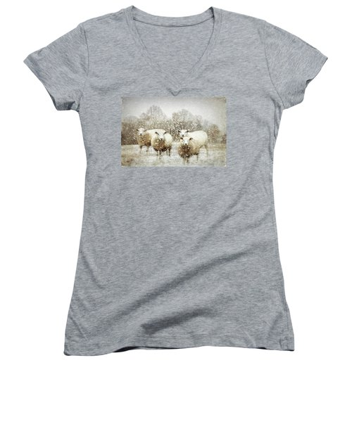Women's V-Neck T-Shirt featuring the photograph Sheep Gathering In Snow by Bellesouth Studio