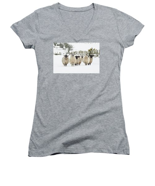 Sheep In Snow Women's V-Neck (Athletic Fit)