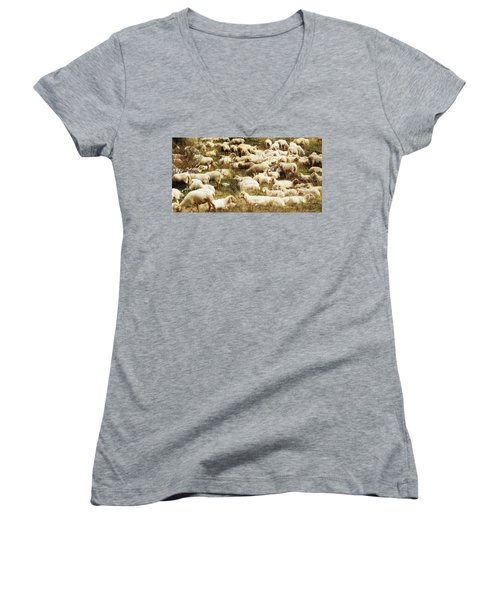 Sheep Women's V-Neck (Athletic Fit)