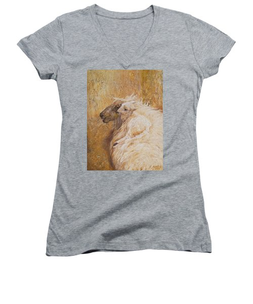 Sheep With A New Born Lamb Women's V-Neck T-Shirt